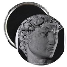 Michelangelo David Sculpture Magnet