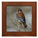 Kestrel Framed Tile