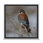 Kestrel Tile Coaster