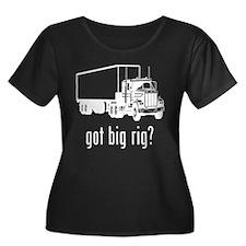 Big Rig 1 T