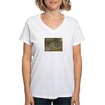 Tortoise Shelby A'Tuin Women's V-Neck T-Shirt