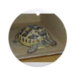 Tortoise Shelby A'Tuin Ornament (Round)