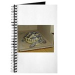 Tortoise Shelby A'Tuin Journal