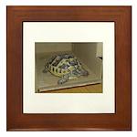 Tortoise Shelby A'Tuin Framed Tile
