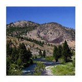 Truckee River Tile Coaster