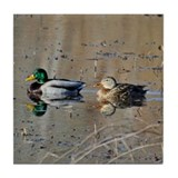 Mallards Tile Coaster