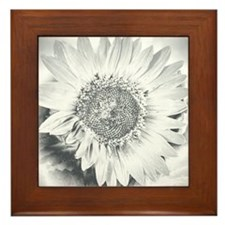 Grayscale Sunflower Framed Tile