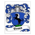 Braun Family Crest Small Poster