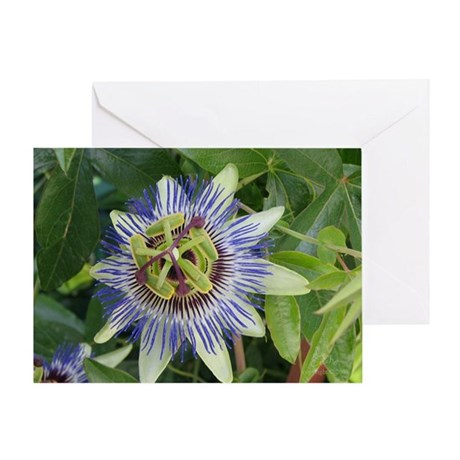 Passion Flower BLANK Card (1)