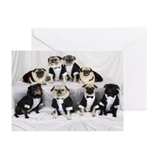 Time To Celebrate Greeting Cards (Pk of 20)