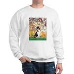 Spring / Collie Sweatshirt