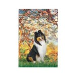 Spring / Collie Rectangle Magnet (10 pack)