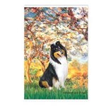 Spring / Collie Postcards (Package of 8)