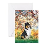 Spring / Collie Greeting Cards (Pk of 10)