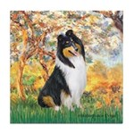 Spring / Collie Tile Coaster