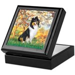 Spring / Collie Keepsake Box