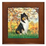 Spring / Collie Framed Tile