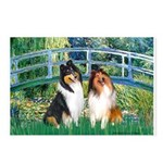Bridge / Two Collies Postcards (Package of 8)