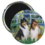Bridge / Two Collies 2.25