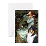 Ophelia / Collie (tri) Greeting Cards (Pk of 10)