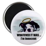WHATEVER IT WAS -IM INNOCENT Magnet