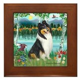 Birches / Collie (tri) Framed Tile