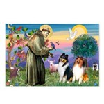 St Francis / Collie Pair Postcards (Package of 8)