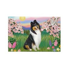 Blossoms / Collie (tri) Rectangle Magnet