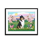 Blossoms / Collie (tri) Framed Panel Print