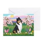 Blossoms / Collie (tri) Greeting Cards (Pk of 20)