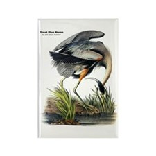 Audubon Great Blue Heron Rectangle Magnet (10 pack