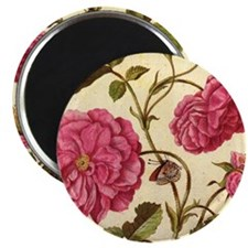 Dutch Rose by Merian Magnet