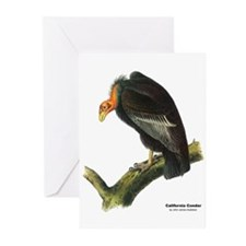 Audubon California Condor Bird Greeting Cards (Pk