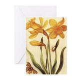 Daffodil by Merian Greeting Cards (Pk of 10)