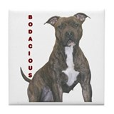 BODACIOUS!!!! Tile Coaster