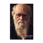 Charles Darwin: Evolution Mini Poster Print