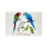 I love Parrots Rectangle Magnet