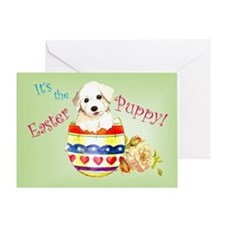 Easter Bichon Frise Greeting Card