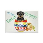 Easter Rottweiler Rectangle Magnet