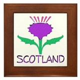 ...Scotland Thistle... Framed Tile