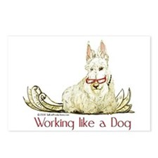 Working Wheaten Scottish Terr Postcards (Package o