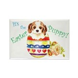 Easter Cavalier Rectangle Magnet