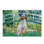 Bridge / English Setter Postcards (Package of 8)