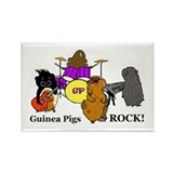 Guinea Pigs Rock! Rectangle Magnet (100 pack)