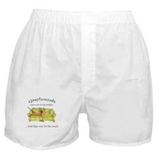 Racing For The Couch Boxer Shorts