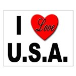 I Love U.S.A. Small Poster