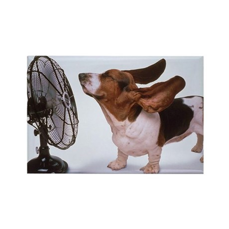Basset Hound - Fan Magnet