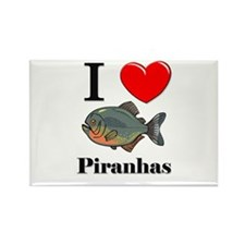 I Love Piranhas Rectangle Magnet