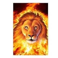 Lion 1 Postcards (Package of 8)