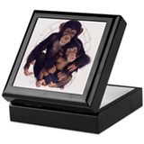 Chimpanzee Keepsake Box